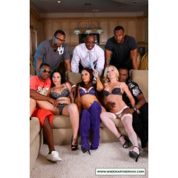 Sheena Ryder, Mandy Monroe Interracial Orgy [HD 720p Download]